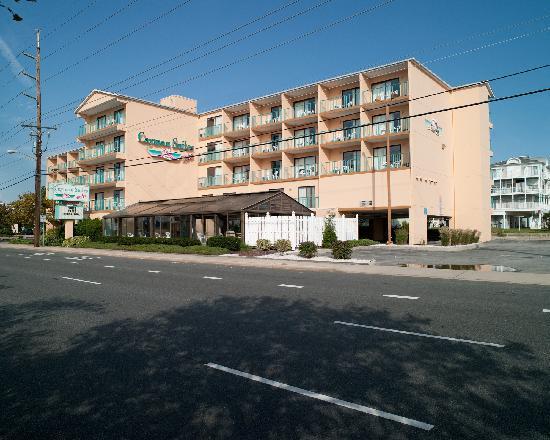 Cayman Suites: Street View