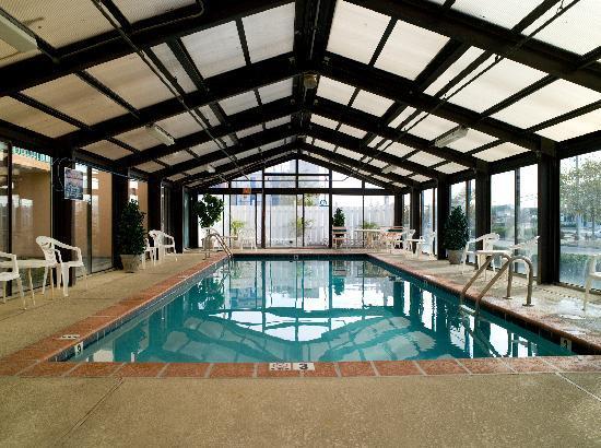 Cayman Suites: Indoor Pool