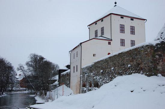 Nykoping Castle: il castello