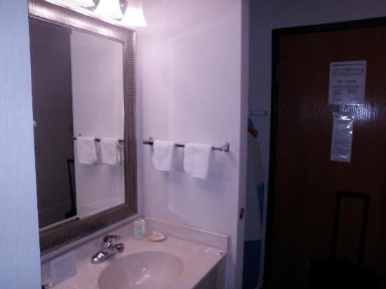 Quality Inn Columbia City: Sink area