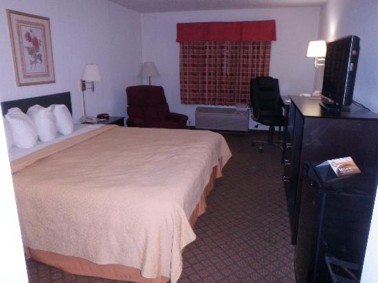 Quality Inn Columbia City : King-sized room, showing fridge, microwave and tv