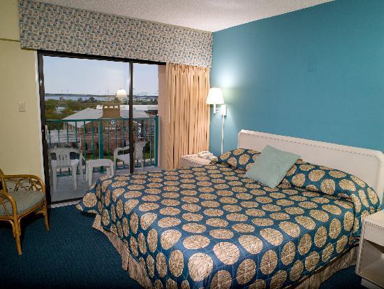 Cayman Suites: King Suite