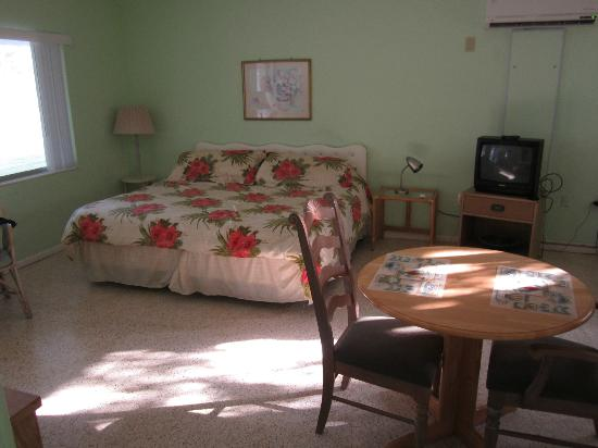 Beau Lido Suites: Deluxe room