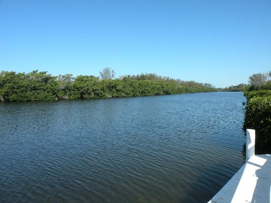 Siesta Key Bungalows: Lagoon area