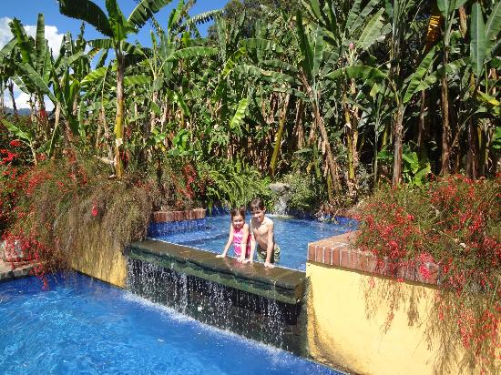 Quinta de las Flores: Kids int he pool