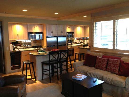 The Loft at the Mountain Village: Kitchen area with new, SS appliances