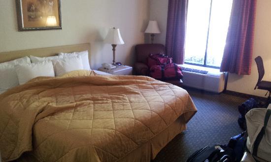 Comfort Inn: In my room