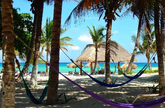 Petit Lafitte: as you walk to the beach from the bungalows - hammocks
