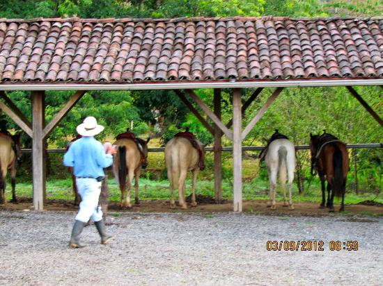 Rancho de Caldera Eco-Resort & Hotel: Saddled up and ready to go