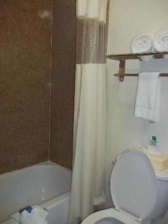 MainStay Suites Texas Medical Center/Reliant Park: bathroom/shower