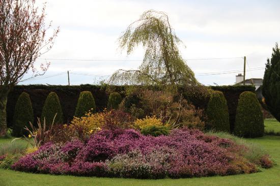 Glenraha Farmhouse B&B: A lovely garden in the front yard.