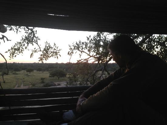 Umlani Bushcamp: the sunrise in the tree house