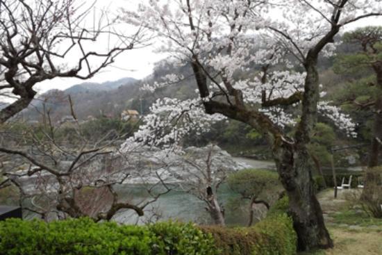 Hana no Omotenashi Choseikan: 長生館2階のベランダからの風景