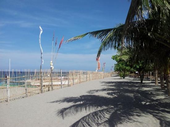 Canoe Beach Resort: Beach