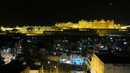 Palace View Guest House: roftopview in the night