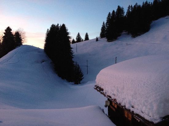 Berghaus Alpenrösli: Blick vom Hotel 3