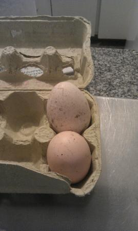 1555 Malabia House: special eggs... (the breakfast chef explained the story before making a yummy omelette!)