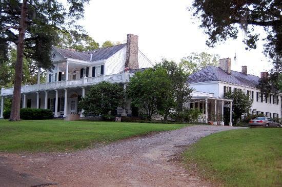 Linden Bed and Breakfast: Front view of Linden