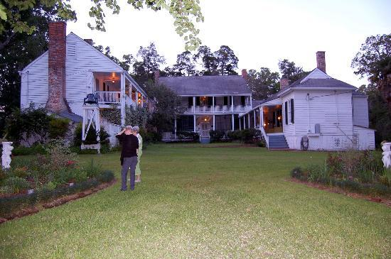 Linden Bed and Breakfast: Back view of Linden