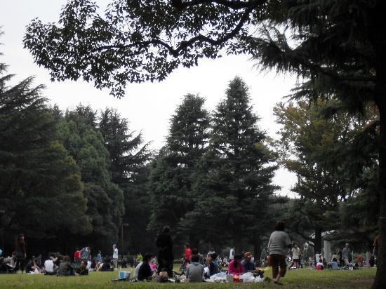 Yoyogi-Park: Ein wunderbarer Park mit viel Grün, viel Platz, viel Weite