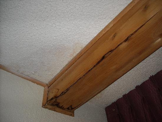 Quality Inn Omaha: wood trim along ceiling