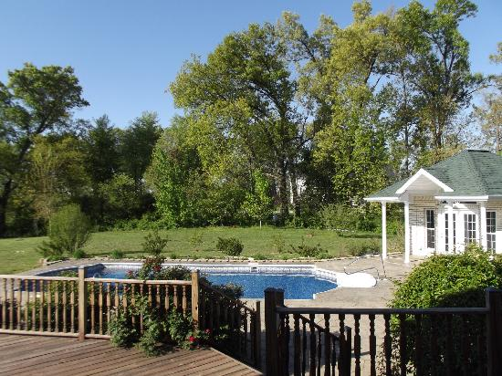 Southern Grace Bed and Breakfast: The pool out back