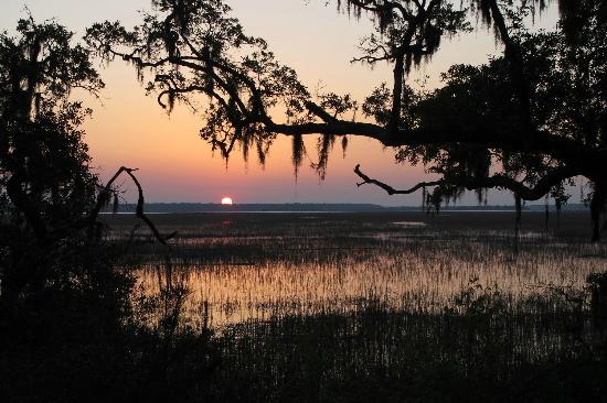 Palm Key: Sunrise