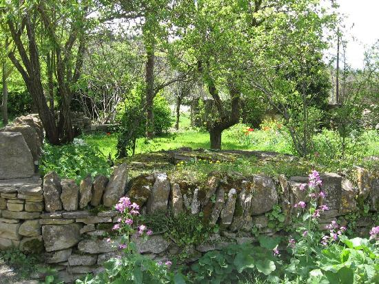 写真Le Jardin Clos枚