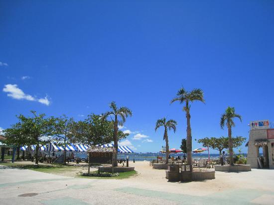 Sunset Beach : 晴れた日はとても気持ちのいいビーチです。