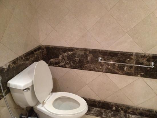 Makkah Hilton Towers : toilet