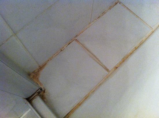 Vorsfelder Hof: So sieht die Dusche aus