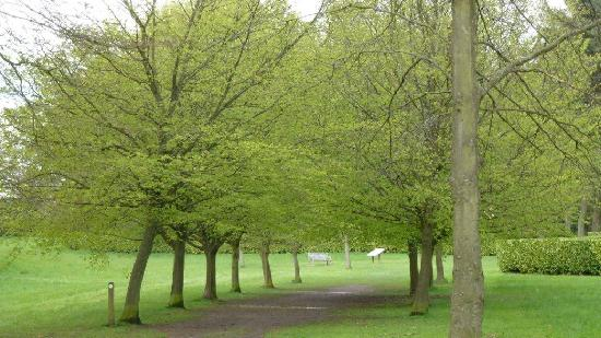 Whipsnade Tree Cathedral