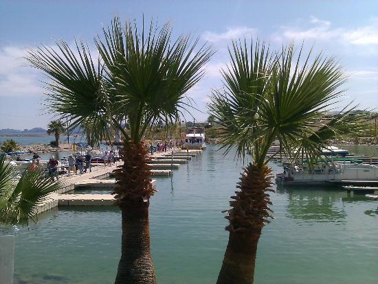 Golden Nugget Laughlin : Ferry casino side of lake havasu