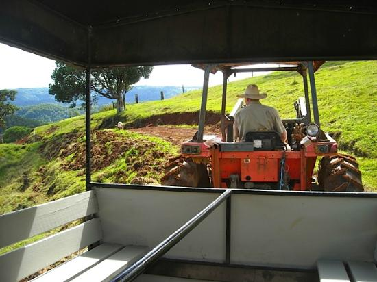 Solothurn Rural Resort: Tractor ride