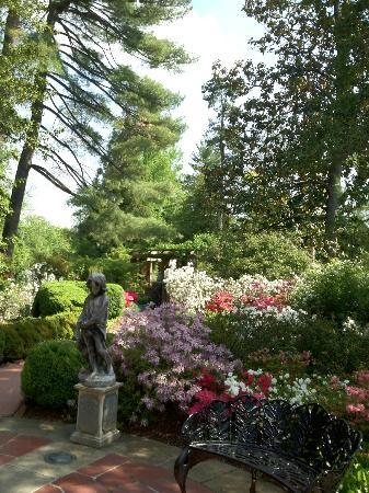 Hillwood Museum & Gardens: Rear garden.