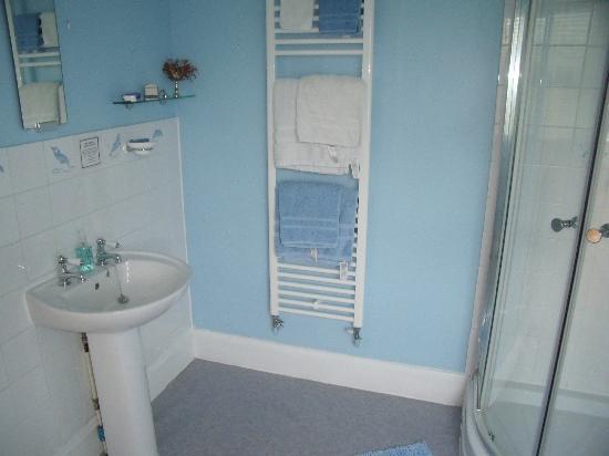 Avalon Lodge Bed & Breakfast: Orchard Room bathroom