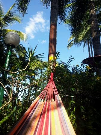 Travellers Oasis Backpackers: Hammocks