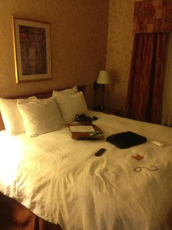 Hampton Inn Salt Lake City/Layton: Comfortable bed