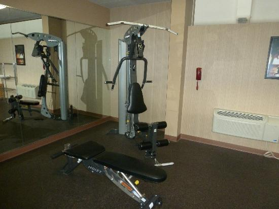 Holiday Inn Hotel and Conference Center Detroit - Livonia: All in one exercise machine in fitness center