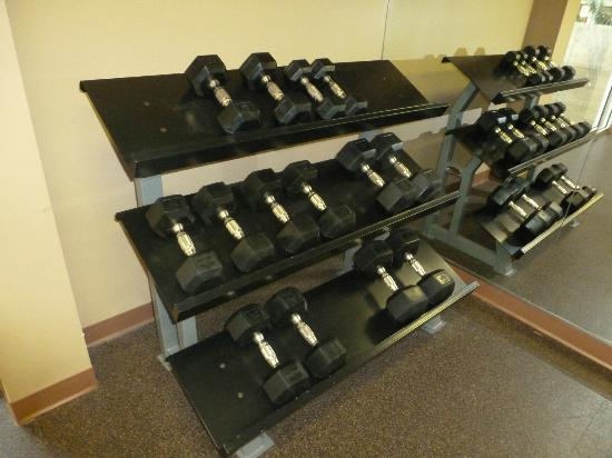Holiday Inn Hotel and Conference Center Detroit - Livonia: dumbbell weights in fitness center