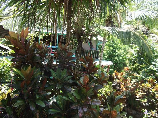 Walaba Hostel & Beach Houses: paradiesisch dieses ambiente......
