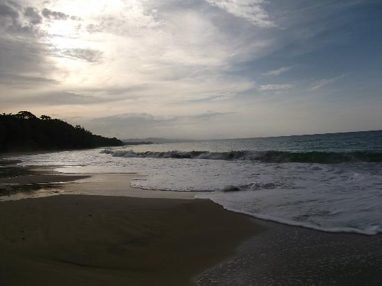 Walaba Hostel & Beach Houses: 2 bis 3 min und man ist an diesem sandstrand!!!