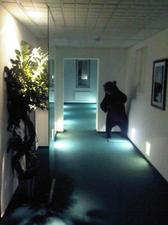 Hotel Petrovsky Passage: corridoio