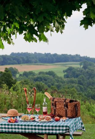 ذا إن آت هاني ران: A picnic in Ohio's Amish country