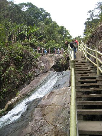 Panlong Paradise Resort : Steps along the hike
