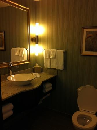 Holiday Inn Hotel & Suites Saskatoon Downtown: bathroom