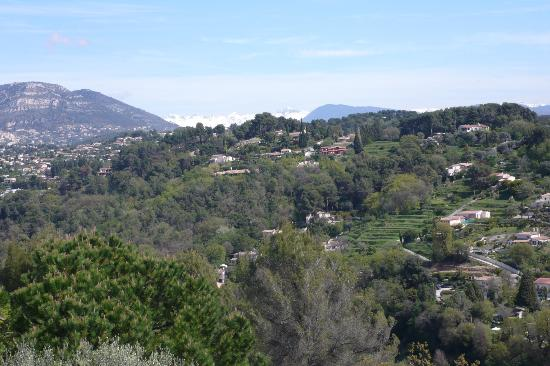 Exclusive Riviera Private Tours : View from St Paul