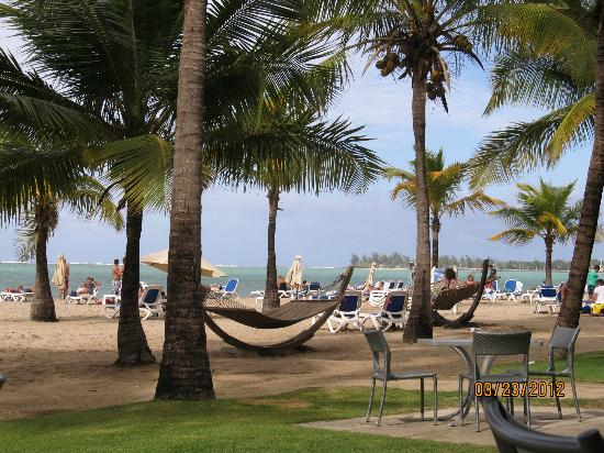 Courtyard By Marriott Isla Verde Beach Resort View