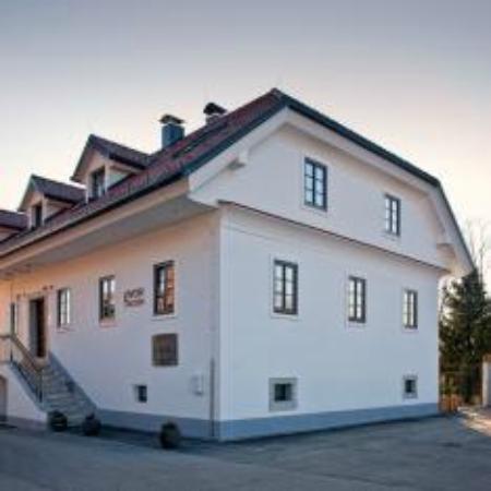 Mansion Dvor Tacen: fronte hotel