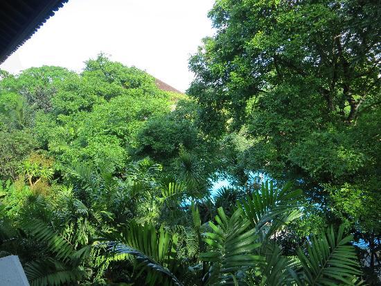 Hotel Kumala Pantai: view of main pool from b17